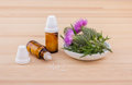Homeopathic medicine with Mary thistle