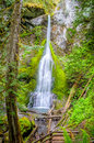 Marymere Falls, Olympic National Park Royalty Free Stock Photo