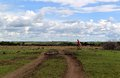 Masai mara village a adult walk out his with a kid Royalty Free Stock Photo