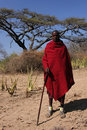 Masai sheperd Royalty Free Stock Images