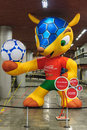 Mascot fifa world cup 2014, armadillo Stock Photo