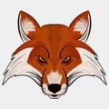 Mascot Vector Illustration fox head cartoon style Royalty Free Stock Photo