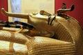 Gold Pharaon