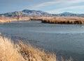 Mason Valley Wildlife Manageme...