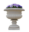 Masonry pot with viola pansy flowers isolated Stock Photos