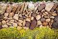Masonry stonewall in spring with flowers menorca at balearic islands Stock Images