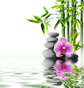 Massage with orchid and bamboo purple flower end on water Royalty Free Stock Photo