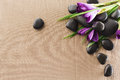 Massage stones with flowers on mat Royalty Free Stock Photos