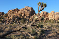 Massive Granite Boulders - Joshua Tree Stock Image