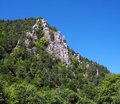 Massive rocks at kraloviansky meander slovakia summer view of rocky formations hidden in green coniferous forest located natural Royalty Free Stock Images
