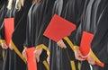 Masters degree Royalty Free Stock Image