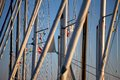 Masts Of Sailing Boats
