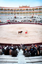 A matador is main performer in bullfighting Stock Photo