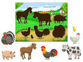 Match the animals to their shadows child game Royalty Free Stock Photo