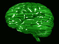Matrix Green Brain Royalty Free Stock Image
