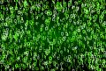 Matrix style green binary numbers background texture Royalty Free Stock Photo