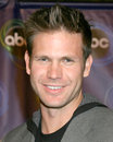 Matt davis abc tv tca party wind tunnel pasadena ca january Royalty Free Stock Photography