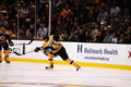 Matt Hunwick Boston Bruins Royalty Free Stock Photo