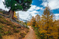 Matterhorn with hiking trail Royalty Free Stock Images