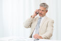 Mature businessman on phone calling mobile in office Royalty Free Stock Image