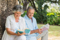Mature couple reading books together sitting on tree trunk in the park sunny day Royalty Free Stock Photo