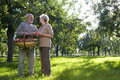 Mature couple smiling at each other in orchard, man with basket of apples, low angle view Royalty Free Stock Photo