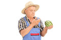 Mature farmer injecting chemicals into watermelon isolated on white background Stock Photo