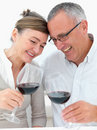 Mature joyful couple toasting wine Royalty Free Stock Photos