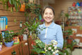 Mature woman chooses bonsai happy in pot at flower shop Stock Photo