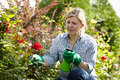 Mature woman look after her garden Stock Photos