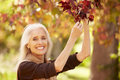 Mature woman relaxing in autumn landscape smiling to camera Stock Photo