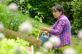 Mature woman works in her garden Royalty Free Stock Photo