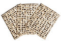 Matzah Royalty Free Stock Photo