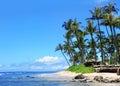 Maui beach, Hawaii Royalty Free Stock Photo