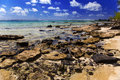 Mauritius. Stony landscape of the island Gabriel. Royalty Free Stock Images