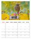 May calendar with a bird perched on a decorated fence Stock Images
