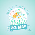 23 may World Turtle Day Royalty Free Stock Photo
