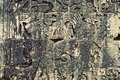Mayan Ancient Carvings Royalty Free Stock Photo