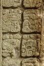 Mayan Hieroglyphs, Copan, Hond...