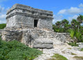 Mayan ruin in the caribbeans mexico tropical vegetation with on a caribbean beach riviera maya cancun Royalty Free Stock Photography