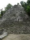Mayan temple ruins of a in coba mexico Royalty Free Stock Image