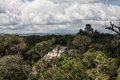 Mayan temples and rainforest canopy ruins of an ancient massive urban center lie in the of guatemala this area is within tikal Stock Images
