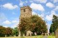 Mayflower Tree in Old English Churchyard Royalty Free Stock Photo