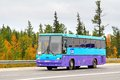 Maz novyy urengoy russia august blue interurban coach at the city street Stock Image