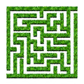 Maze of green bushes, labyrinth garden. Vector illustration. Iso Royalty Free Stock Photo