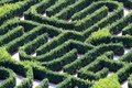 Maze made with hedges in a garden of a villa Royalty Free Stock Photo