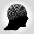 Maze profile