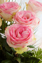 Mazzo delle rose dentellare tenere Fotografia Stock Libera da Diritti