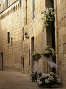 Mdina Flowers Stock Image