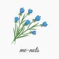Me-nots